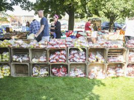 Crates of apples stacked onto of each other at apple fest