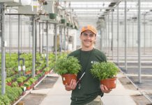 Man holding plants in a green house